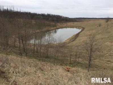 0 Freeman Mine Road, Industry, IL 61440 - #: 1243591