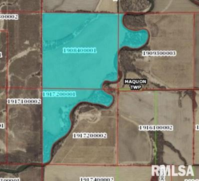 Farm 9096 Knox Rd 1400 E, Maquon, IL 61458 - #: 1245001