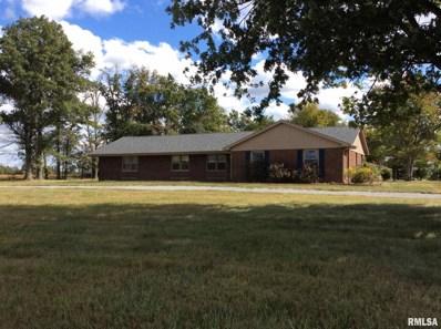 13244 N Woodlawn Lane, Woodlawn, IL 62898 - #: 1247625