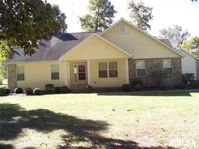 359 Beyers Lake Estates, Pana, IL 62557 - #: 1248094
