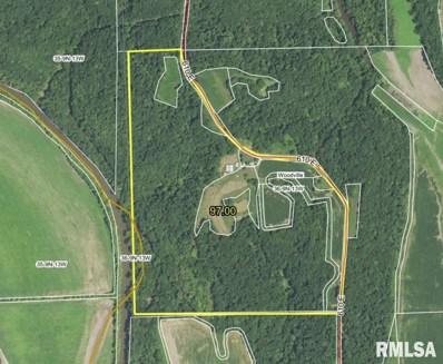 610 E County Road, Eldred, IL 62027 - #: 1248565