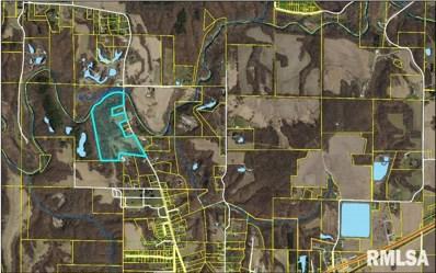 N Coal, Colchester, IL 62326 - #: 1250563
