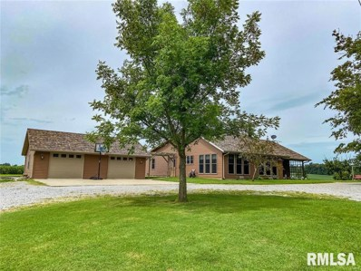 85 Langley Road, Raleigh, IL 62977 - #: 1252060