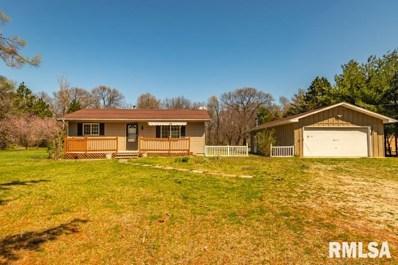 26088 N County Road 2450 N, Topeka, IL 61567 - #: 1253841