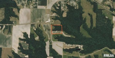 1510 255 00 East St, Timewell, IL 62375 - #: 1253955