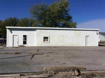 401 N Main Street, Ina, IL 62846 - #: 1256616