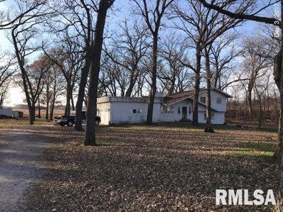 23009 Il Hwy 78 Route, Annawan, IL 61234 - #: 194300