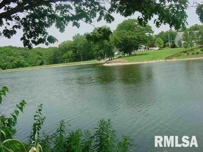 63 Rustic Lake Estates, Colona, IL 61241 - #: 242731