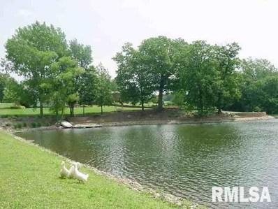 66 Rustic Lake Estates, Colona, IL 61241 - #: 242734