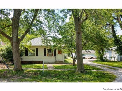 419 S Church Street, Virden, IL 62690 - #: 313152