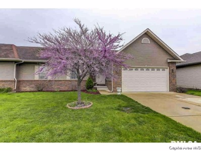 212 Patton, New Berlin, IL 62670 - #: 379135