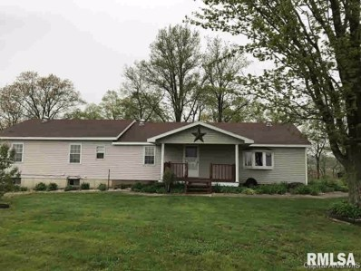 1296 Nw 200 Ave 11296 200 Ave, Roodhouse, IL 62082 - #: 379403