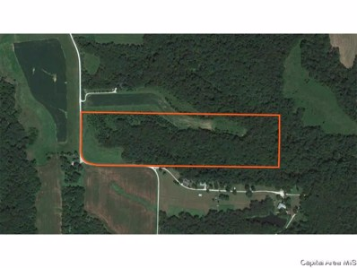 1 County Rd 1540 N, Timewell, IL 62375 - #: 379736
