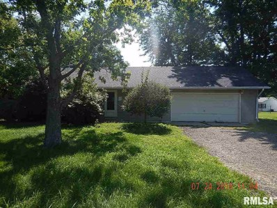 418 N Central Street, Mineral, IL 61344 - #: 380245