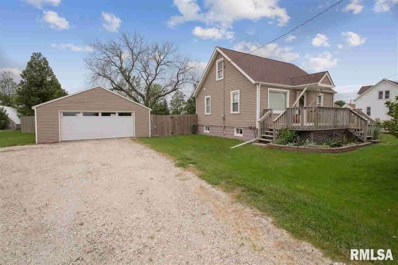 411 S Central Street, Mineral, IL 61344 - #: 381319