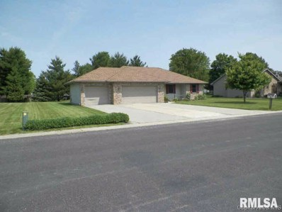 11 Constitution Drive, New Berlin, IL 62670 - #: 381391