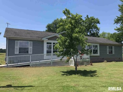 451 Lincoln Extension, Dowell, IL 62927 - #: 482185