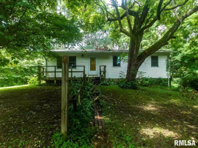 29378 Route 3 None, Thebes, IL 62990 - #: 500772