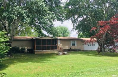 408 Spruce Street, McLeansboro, IL 62859 - #: 501036