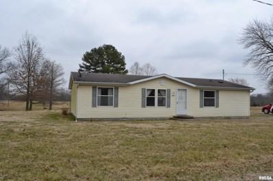 368 S Oak Street, Richview, IL 62877 - #: 503507