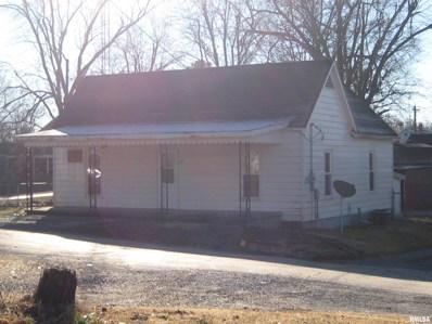 311 Mill, Rosiclare, IL 62982 - #: 503523