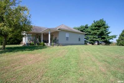 729 E County Rd 1375, Carmi, IL 62821 - #: 504758