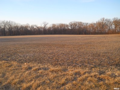 24101 Brink Road, Carlyle, IL 62231 - #: 534005