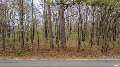 Fox Hunters Road, Valier, IL 62891 - #: 534165