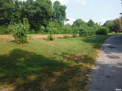 800 Springville Hill Road, Jonesboro, IL 62952 - #: 534380