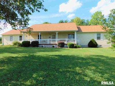 600 E Briarwood Drive, McLeansboro, IL 62859 - #: 543166