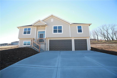 429 Spring Branch Drive, Raymore, MO 64083 - #: 2131122