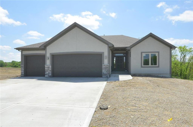 4609 NW 141st Terrace, Platte City, MO 64079 - #: 2140954