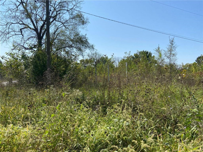 19500 S HOOVER Road, Pleasant Hill, MO 64080 - #: 2244929