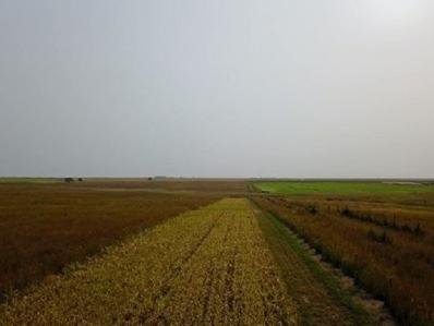 O Road, Damar, KS 67632 - #: 20202755