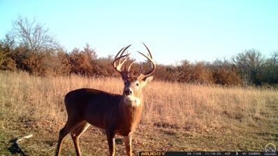 B, Havensville, KS 66432 - #: 213632