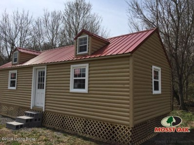 1 Ferris Creek Rd, Burkesville, KY 42717 - #: 1501467