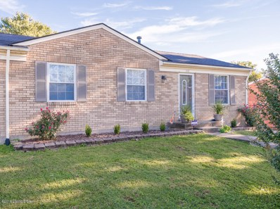 142 Summers Dr, Louisville, KY 40229 - #: 1517578