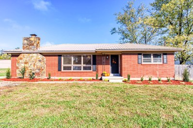 294 Cedar Grove Rd, Shepherdsville, KY 40165 - #: 1546930