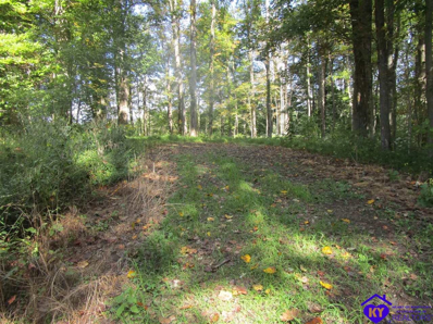 Crosier Bottom Road, Battletown, KY 40104 - #: 10054081