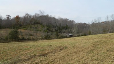 589 Judd Road, Booneville, KY 41314 - #: 1725747
