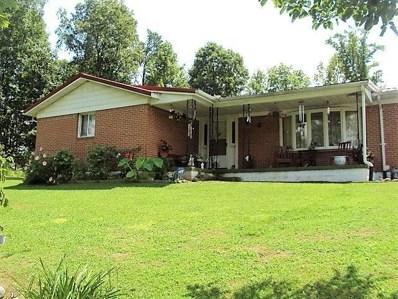 329 Black Bear Lick Road, Livingston, KY 40445 - #: 1816876