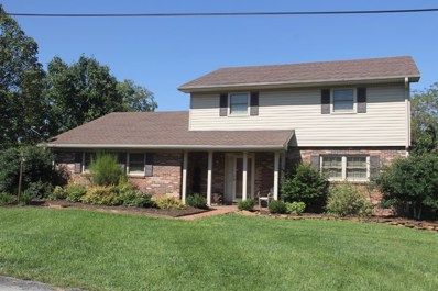 169 Mariella Drive, Owingsville, KY 40360 - #: 1818854