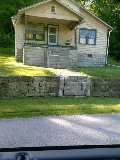 3713 S Upper River Road, Livingston, KY 40445 - #: 1821168