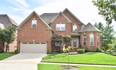 904 Star Of Danube Way, Lexington, KY 40509 - #: 1822302