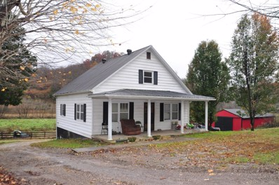 4088 State Highway 437, West Liberty, KY 41472 - #: 1825486