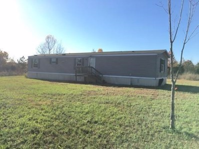 3286 Arnold-Leach Road, Horse Branch, KY 42349 - #: 1826076