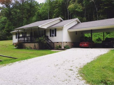 256 Piney Branch, West Liberty, KY 41472 - #: 1827338