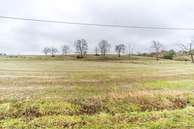 3909 White Lick Road, Paint Lick, KY 40461 - #: 1900023