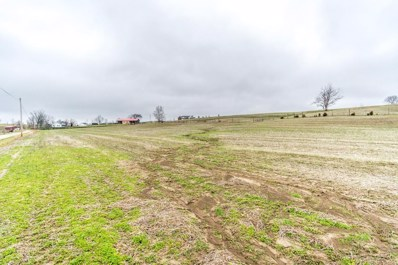 3909 White Lick Road, Paint Lick, KY 40461 - #: 1900024