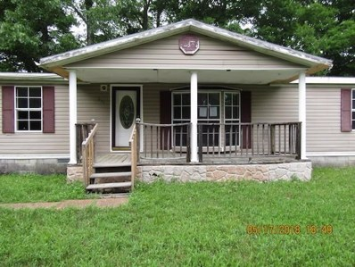 214 Pine Ridge Road, Stearns, KY 42647 - #: 1905206